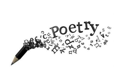 Delight - A Poem by Brannon Chamlee
